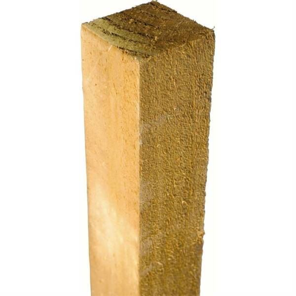 Treated Fence Posts
